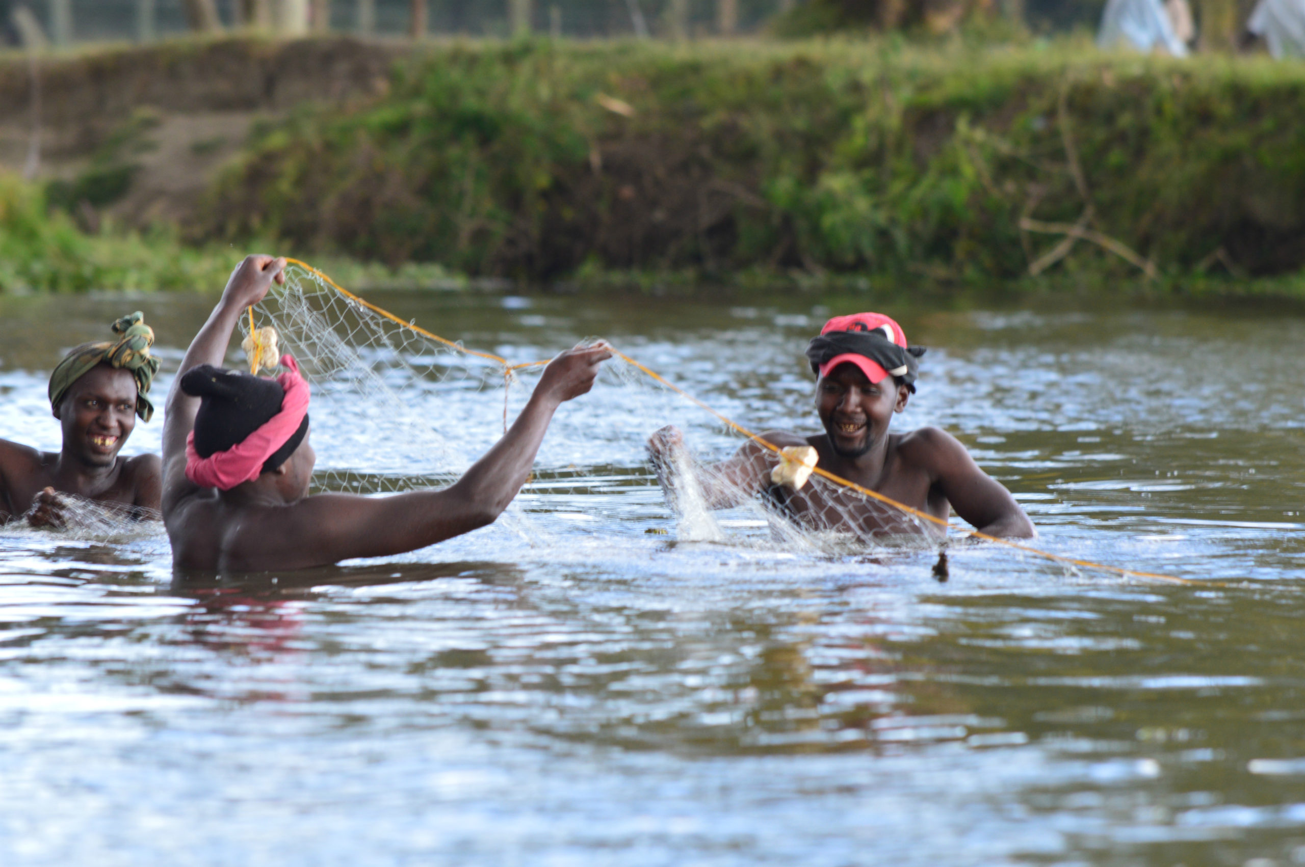 Read more about the article Lake #Naivasha – a ticking time bomb!