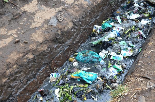 Clean Up Kenya to participate in UNEA III