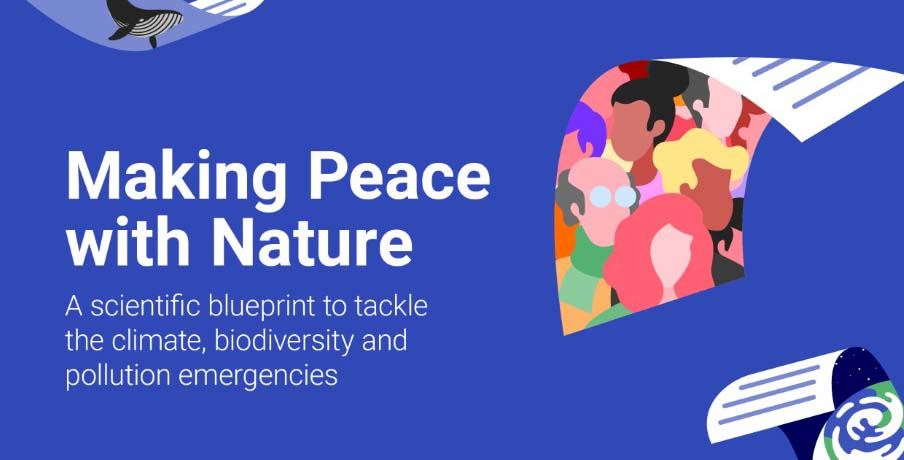 Making Peace with Nature report warns of an environmental planetary emergency